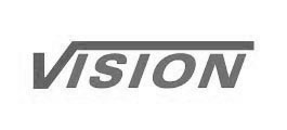 Vision logo