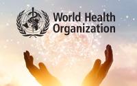 Ayvaz'ın Koronavirüs Formülü Dünya Sağlık Örgütü'nde Görüşülüyor