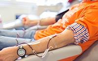 Ayvaz Çalışanları Kızılay'a Kan Bağışında Bulundu