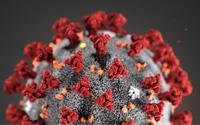 Ayvaz, Koronavirüs Salgınına Karşı Önlemlerini Artırıyor