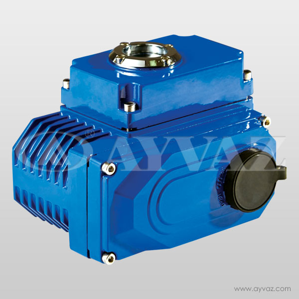 EAD-20 Electric Actuator